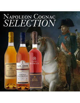 A Great XO Cognac in a Small Statue of a Great Emperor