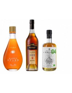 4 Differences between Brandy, Whisky and Cognac