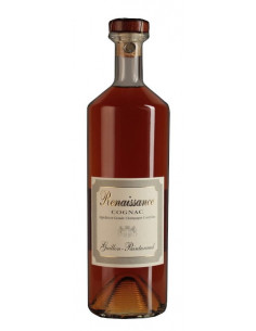 Cognac Sauce Recipes: With Pasta, Pork, Beef - A Welcome Addition to any Dish